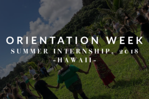 Summer 2018, Week 1: Orientation Week!