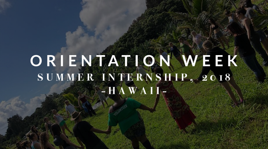 Summer 2018, Week 1: Orientation Week!