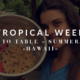 Tropical Week: Farm to Table